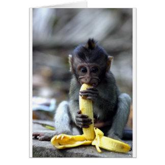Mono de macaque lindo del bebé que come el plátano tarjeta de felicitación