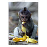 Mono de macaque lindo del bebé que goza del plátan tarjetas