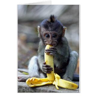 Mono de macaque lindo del bebé que goza del plátan tarjeta de felicitación