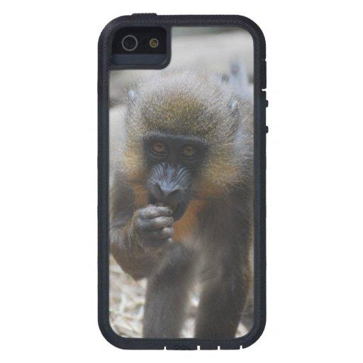 Mono de Mandrill del bebé iPhone 5 Case-Mate Cárcasa