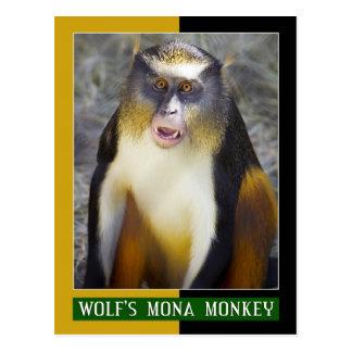 Mono de Mona del lobo (Guenon) Postales