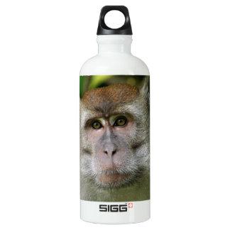 Mono de Patas