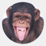 Mono de risa pegatinas redondas