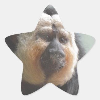 Mono de Saki Pegatina En Forma De Estrella