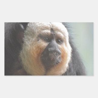 Mono de Saki Pegatina Rectangular