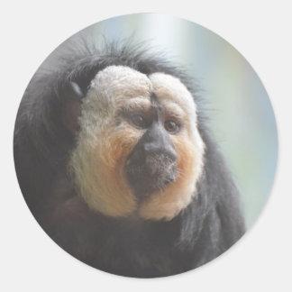 Mono de Saki Pegatina Redonda