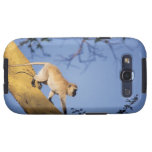 Mono de Vervet en la rama de árbol, Serengeti Samsung Galaxy S3 Cárcasa