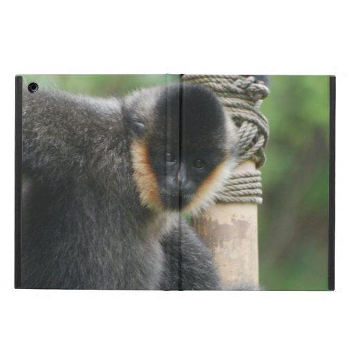 Mono del capuchón