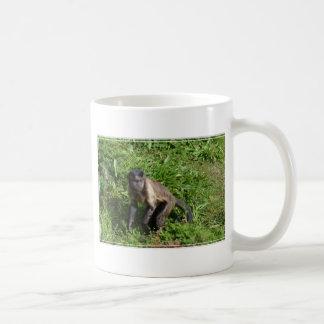 Mono del capuchón que asalta para la cámara taza básica blanca