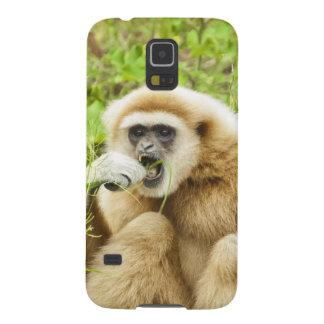 Mono del Gibbon - caja de la galaxia S5 de Samsung Funda Para Galaxy S5
