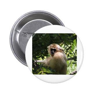 Mono del Gibbon Pin