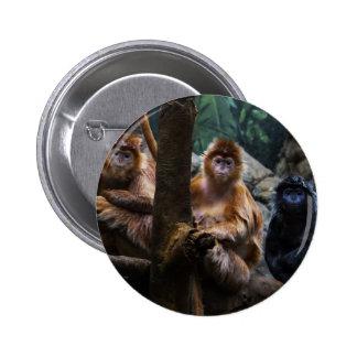 Mono del Langur Pins