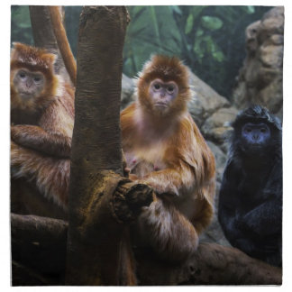 Mono del Langur Servilletas Imprimidas