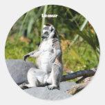 Mono del Lemur Pegatina Redonda