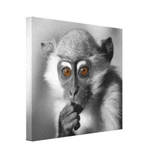 Mono del Mangabey del bebé Impresión En Lienzo Estirada