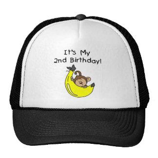 Mono del muchacho en el 2do cumpleaños del plátano gorro
