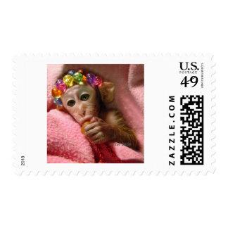 Mono del Snuggle Sello