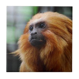 Mono del Tamarin Azulejo Cuadrado Pequeño