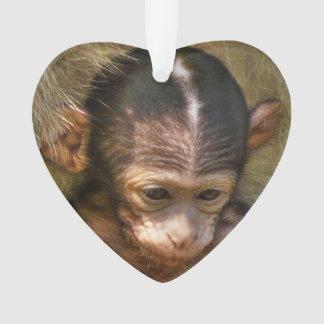 mono dulce del bebé