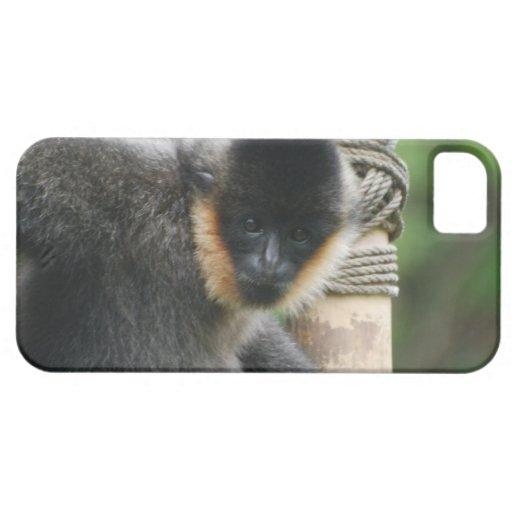 Mono dulce del capuchón iPhone 5 Case-Mate coberturas