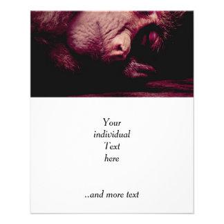 Mono el dormir folleto 11,4 x 14,2 cm