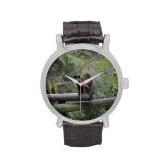 mono en cercar al primate con barandilla triste relojes de mano