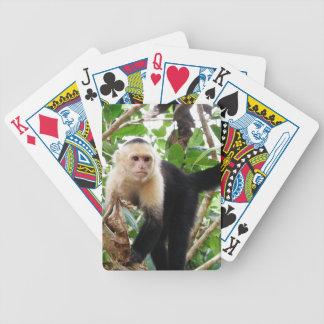 Mono en Costa Rica Baraja De Cartas