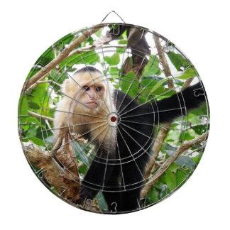 Mono en Costa Rica Tabla Dardos