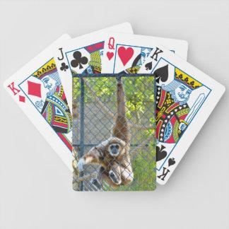 Mono en hábitat del parque zoológico cartas de juego