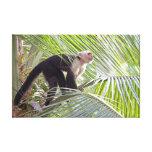 Mono en la foto de bambú de la selva impresiones en lona estiradas
