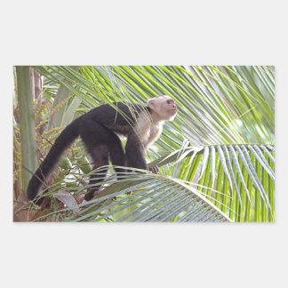 Mono en la foto de bambú de la selva pegatina rectangular