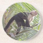 Mono en la foto de bambú de la selva posavasos para bebidas