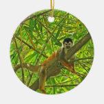 Mono en la selva de bambú ornatos