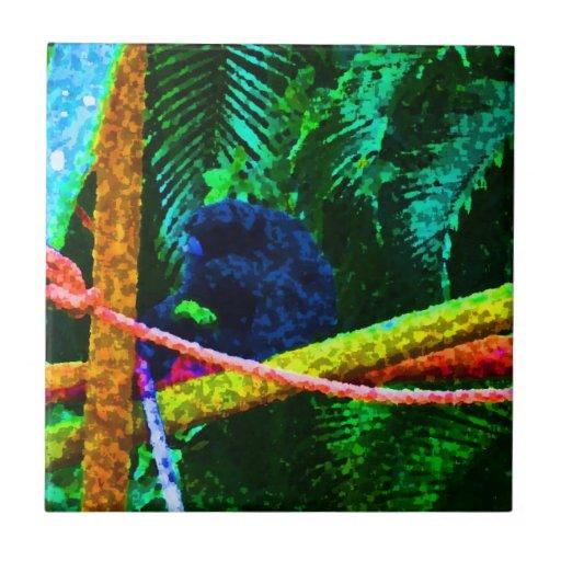 mono en manchas blancas /negras coloridas de la ra tejas  ceramicas