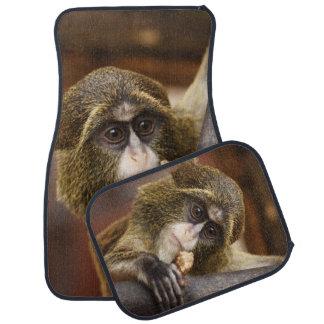 Mono en un árbol alfombrilla de coche