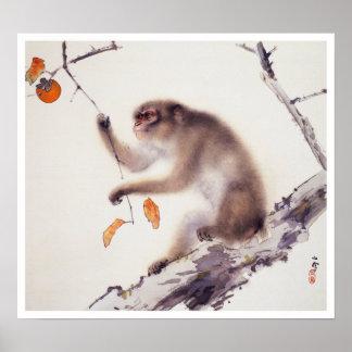 Mono en un árbol de caqui póster