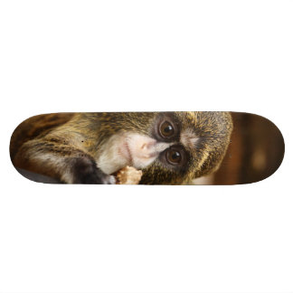 Mono en un árbol monopatín personalizado