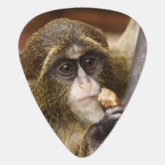 Mono en un árbol uñeta de guitarra