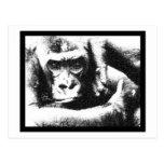 Mono enjaulado - LaRue Postales