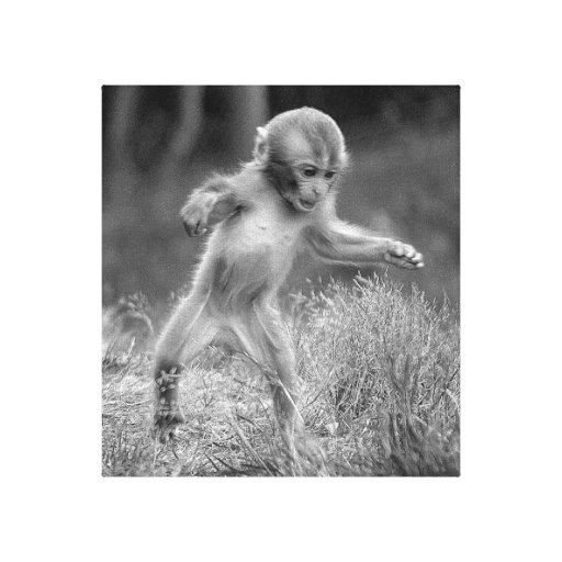 Mono enrrollado impresion en lona