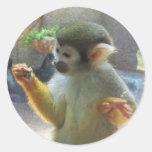 Mono Etiquetas Redondas