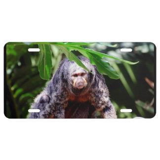 Mono femenino de Saki Placa De Matrícula