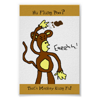 Mono Kung Fu Póster
