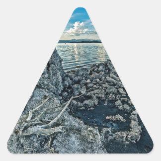Mono Lake Blues Triangle Sticker