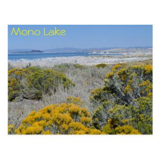Mono Lake, CA Postcard