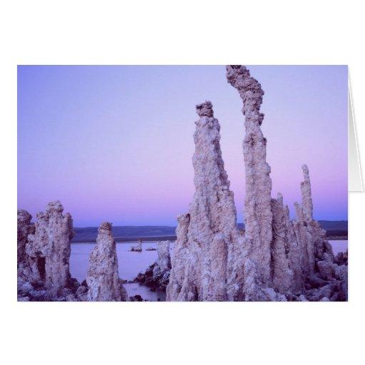 Mono Lake Reserve. California. USA. Tufa Card