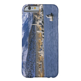 MONO LAKE TUFA STATE NATURAL RESERVE, BARELY THERE iPhone 6 CASE