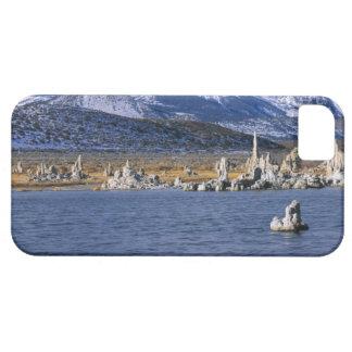 MONO LAKE TUFA STATE NATURAL RESERVE, iPhone 5 CASE