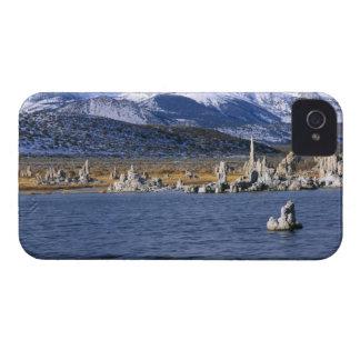 MONO LAKE TUFA STATE NATURAL RESERVE, iPhone 4 Case-Mate CASE