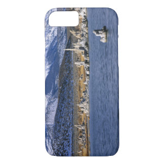 MONO LAKE TUFA STATE NATURAL RESERVE, iPhone 7 CASE